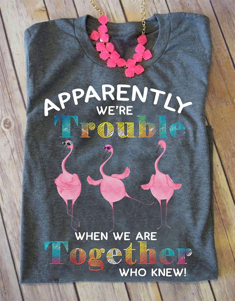 Apparently We're Trouble When We Are Together Who Knew Womens Classic T-Shirt Size S-4XL